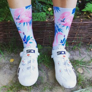 WINAAR FLAMINGOS socks